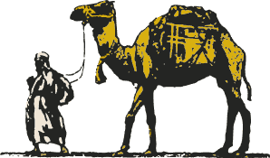 A camel carrying a load being led by a man
